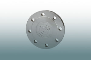 Flange type chemical seals